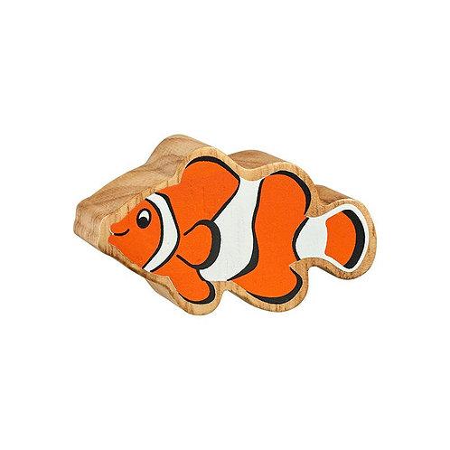 Lanka Kade Clown Fish