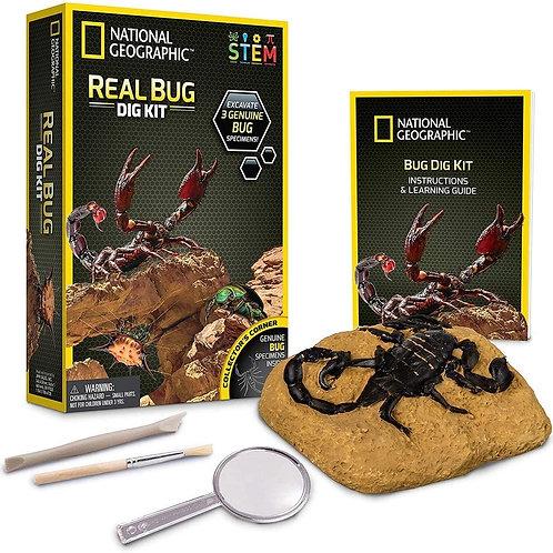 National Geographic Real Bug Dig Kit