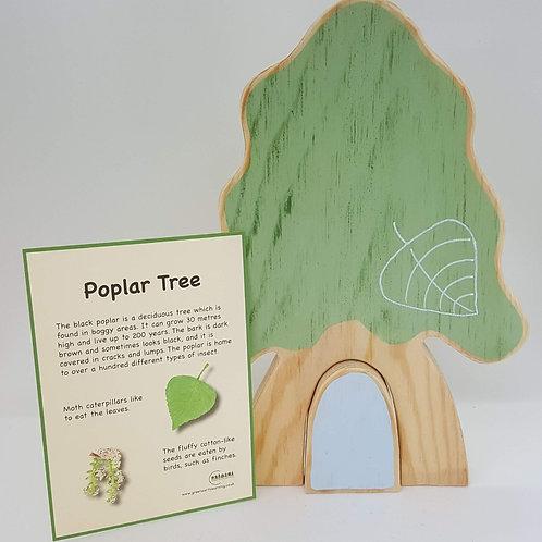 Green Earth Learning Poplar Tree