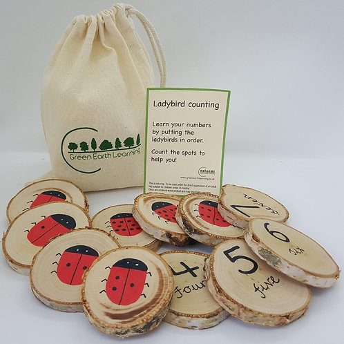 Green Earth Learning Ladybird Counting Game