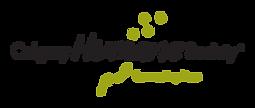 CHS logo.png