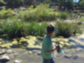 Nature-Animascience-activite-enfant-MJSR