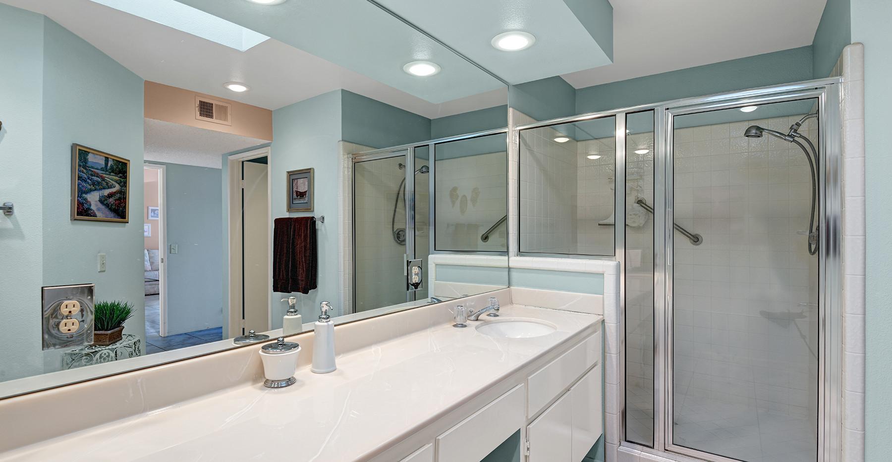 Main Suite Vanity & Stall Shower