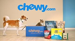 chewy_pet_food_header.webp