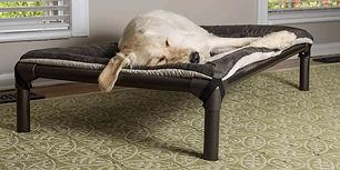 kuranda-dog-beds-front_1_1.jpg