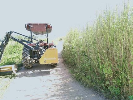 กองช่างเทศบาลตำบลบ้านสาง นำเครื่องจักรออกตัดหญ้าสองข้างทาง