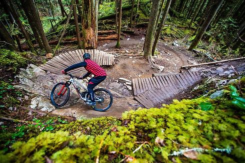 Norco Bikes.jpg