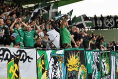 GKS Bełchatów - Widzew Łódź (109).jpg
