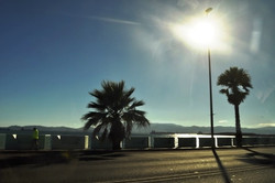 Gibraltar (238)