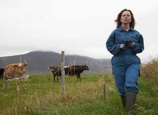 """""""Daleko od Reykjavíku"""" – wdowa (ocena 6/10)"""