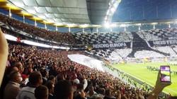 Frankfurt (49)