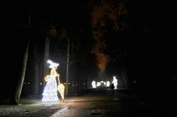 Iluminacje (14)