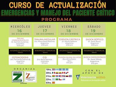 PROGRAMA-CURSO INTERNACIONAL-EMERGENCIAS