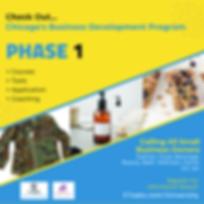 Phase 1 Program Awareness (1).png