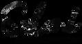 Sokoni-black-marble logo.png