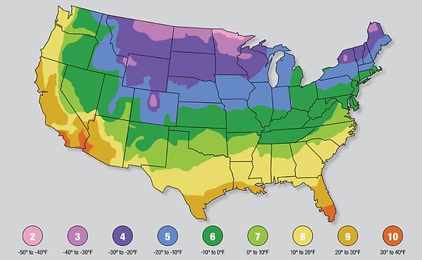USDA Hardiness Zones.png