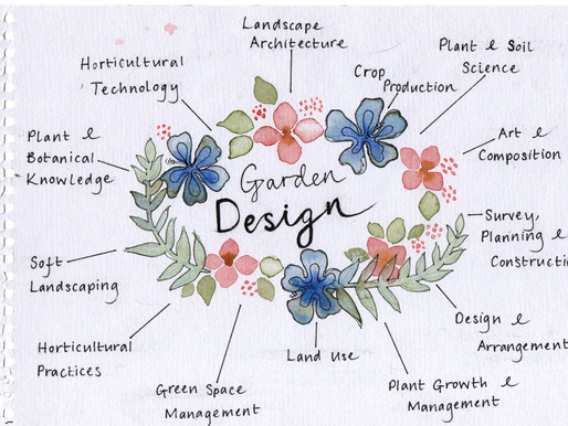 What Is the Garden Design Process Like?