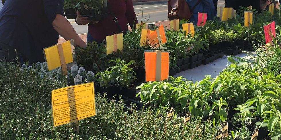 Ohio Herb Center Plant Swap