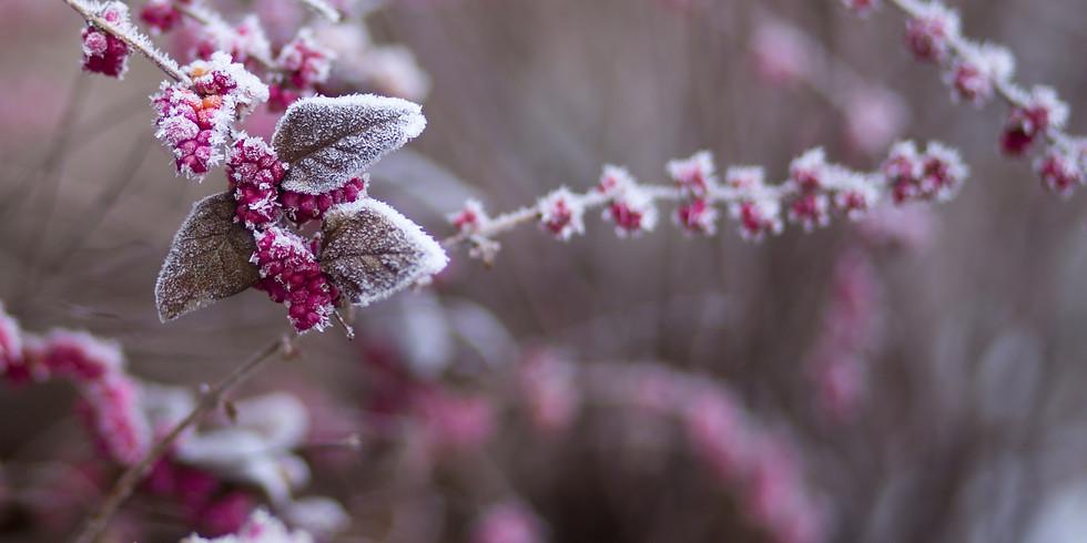 Growing Habitat: Fall & Winter Care