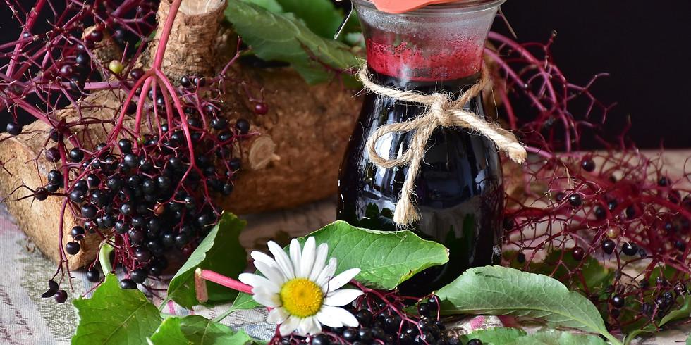 Herbal Folk Remedies: Elderberry Syrup