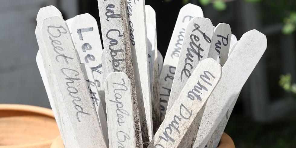 Herb Craft: Stone Garden Markers