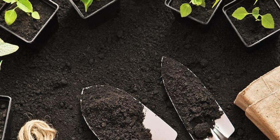 Basic Garden Maintenance