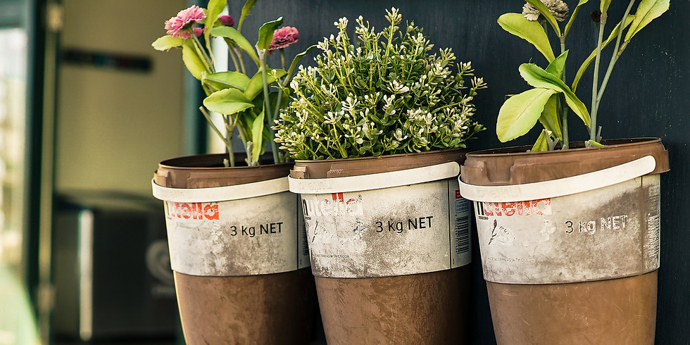 How To Grow an Herb Garden: Containers