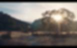 Screen Shot 2020-03-10 at 3.39.17 PM.png