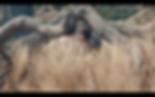 Screen Shot 2020-03-10 at 3.40.31 PM.png
