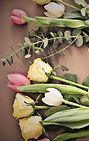 Schnittblumen Blumen