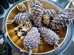 Weihnachten Advent Adventkranz Blumen Gunskirchen Dekoration Wildblüte