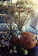 Blumen Gunskirchen Dekoration Indoor Outdoor