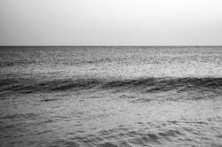 sea#11