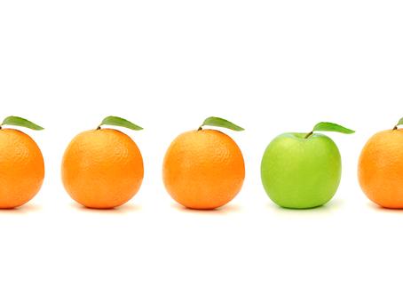 Fruitful Decision-Making Framework