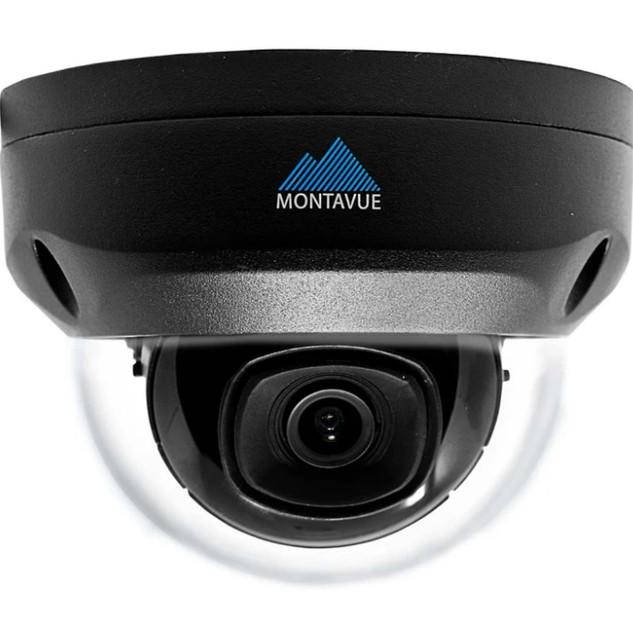 Montavue Black Dome