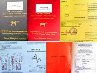 Заполнение паспортов