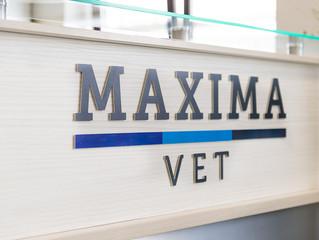 Внимание! Изменение цен на услуги клиники MAXIMA VET!
