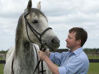 Семинар, посвященный регенеративной терапии спортивных лошадей.