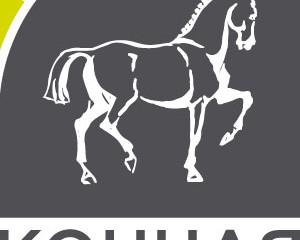Первый Всероссийский форум по  хирургии лошадей.