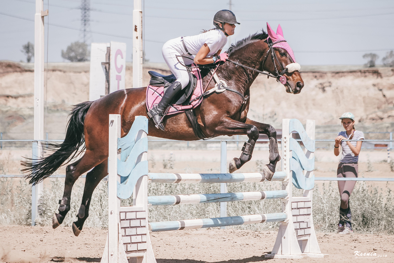 самые люди чемпионы россии по конному спорту фото знать использовала