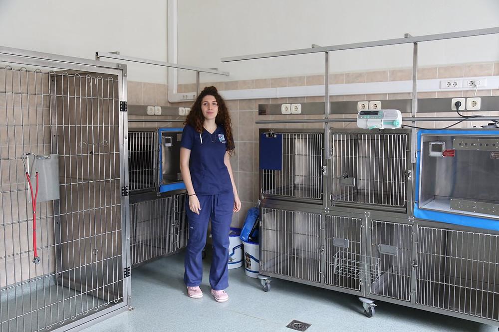 Стационар для мелких домашних животных
