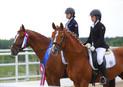 8-10 августа 2019: Кубок России среди молодых лошадей