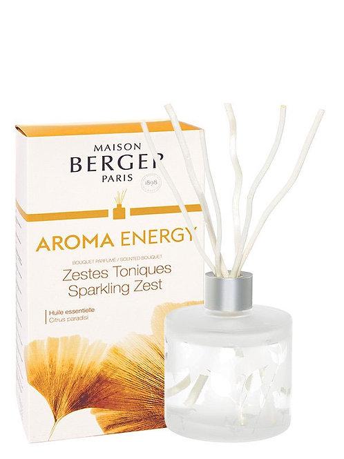 MAISON BERGER Duftbouquet Aroma Energy Strahlende Lebensfreude 180ml