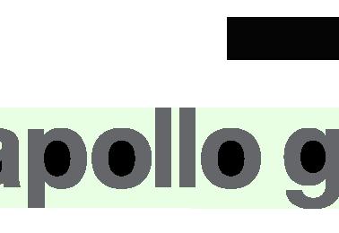 partner-der-nai-apollo-group-englisch_or
