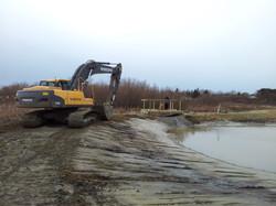 bridge & pond