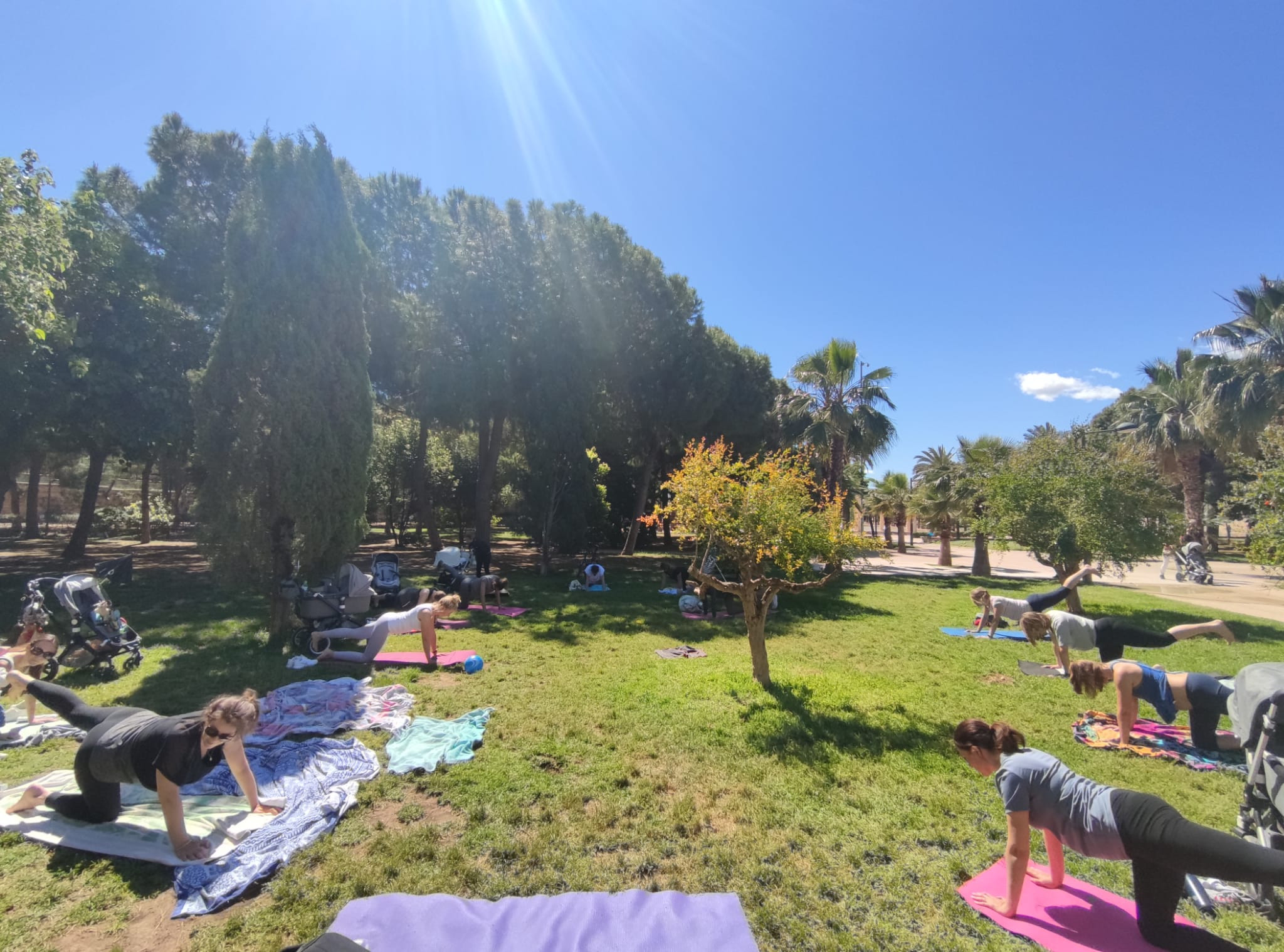 Group Classes Outdoors - Turia Park