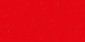 PORTFOLIO RED.png