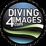 Graham Abbott - Diving 4 Images - logo.p