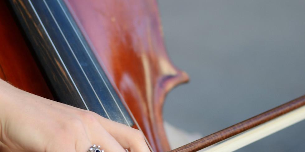 YYSO Masterclass - Cello & Bass