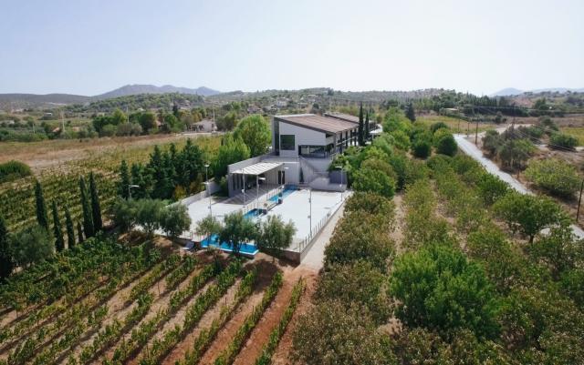 P0013299_Domaine_Papagiannakos_Winery2 (